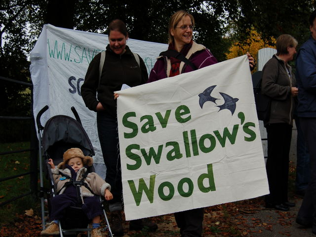 Save Slallow's Wood